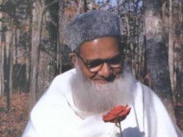 Turning Towards the Heart - Awakening to the Sufi Way
